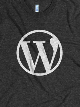 WordPress: Got Plugins?  (4 Plugins you need to check)